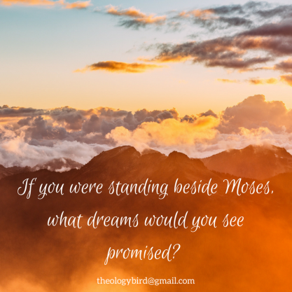 If you were standing beside Moses,what dreams would you see promised-
